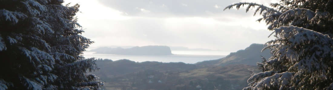 Seil Island Online